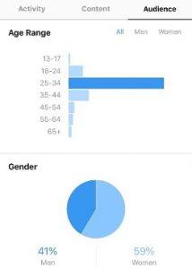 Instagram Analytics Audience View