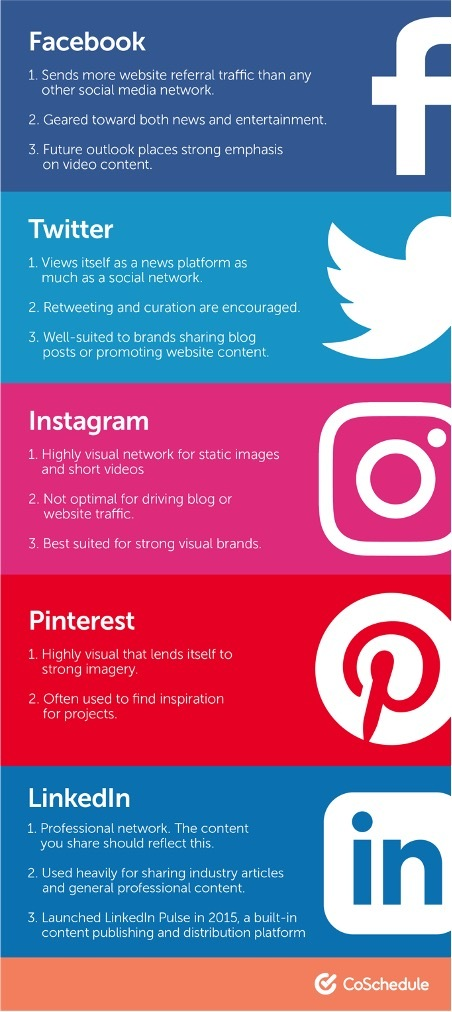 which social media platform is best for my business infographic